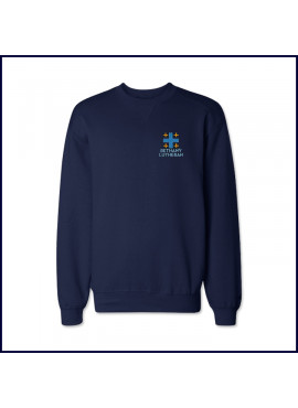 Crew Neck Sweatshirt with Embroidered Logo