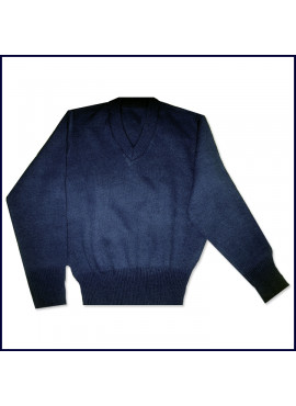V-Neck Pullover Sweater with School Emblem